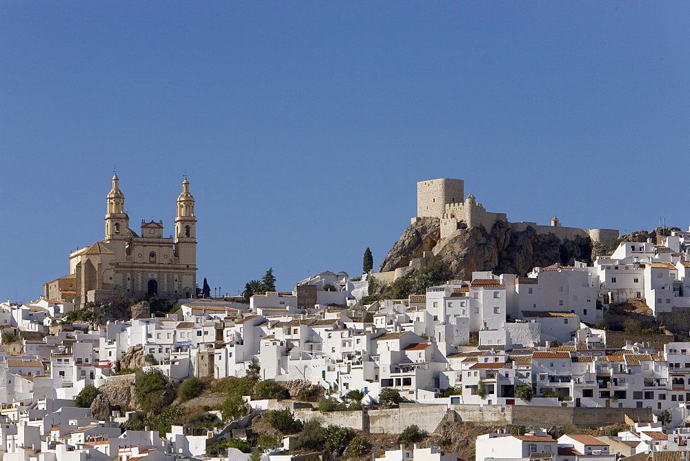 White village, Nuestra Senora de la Encarnacion Church, fortress, Olvera, Andalusia, Spain, Europe