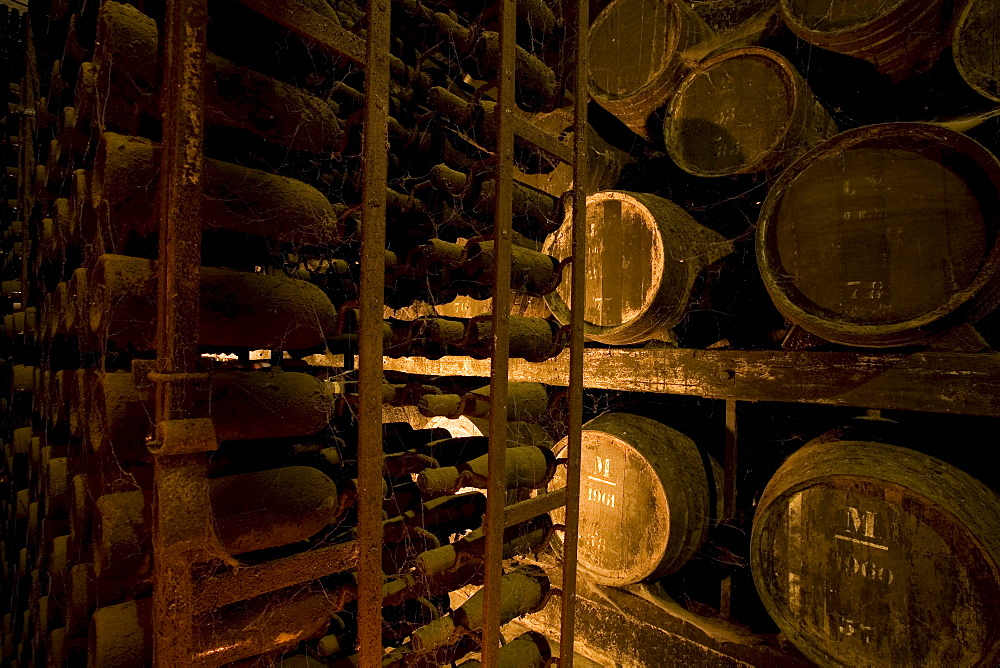 Bodega Jose Maria Fonseca, Winery Museum, all vintages of Moscatel wine are stored here, Vila Nogueira de Azeitao, Setúbal, Portugal, Europe