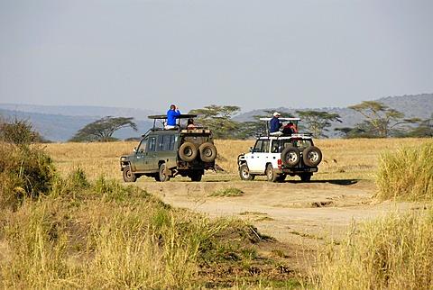 Safari two Toyota Landcruisers in the Serengeti Tanzania