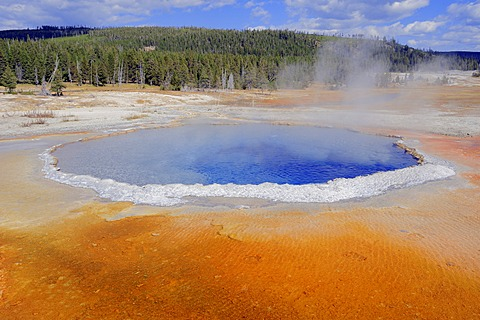 Crested Pool, a hot spring in Upper Geyser Basin, Yellowstone National Park, Wyoming, USA