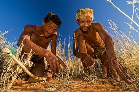 Bushmen, San, near Andriesvale, Kalahari Desert, Northern Cape, South Africa, Africa