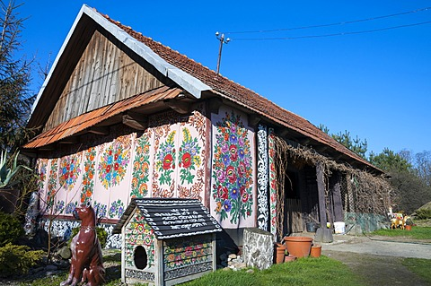 Traditional old wooden farm painted with colorful flowers, village Zalipie, near Tarnow, Lesser Poland, Poland, Europe