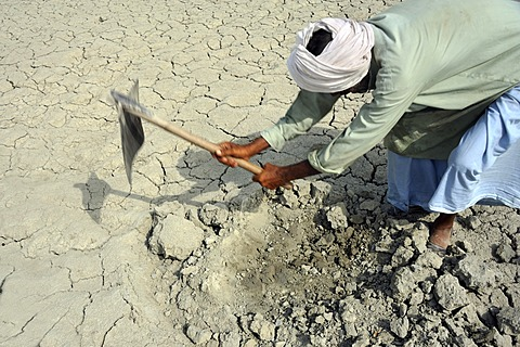 Farmer working on dried loamy soil, Basti Lehar Walla village, Punjab, Pakistan, Asia