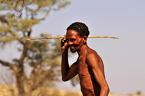 Man of the Khomani-San tribe in the Kalahari with a spear, South Africa, Africa