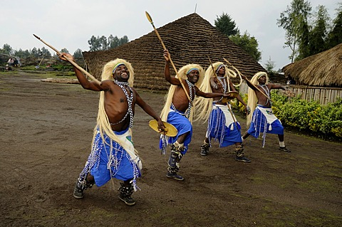 Traditional dancers during a folklore event in a village of former hunters near the village of Kinigi on the edge of the Volcanoes National Park, Parc National des Volcans, Rwanda, Africa