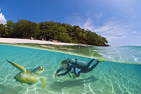 Female diver with a turtle in the shallow waters off an island, Dimakya Island, Palawan, Philippines, Pacific Ocean