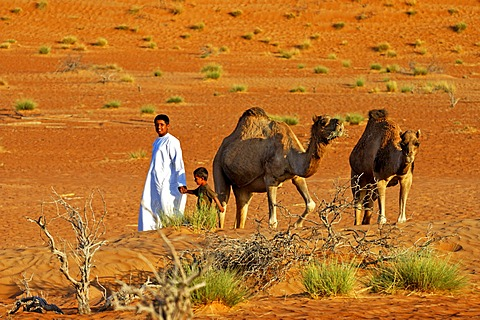 Nomad children with camels in the Wahiba Sands, Ramlat al Wahaybah, Oman