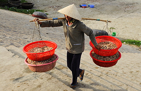 Woman carries baskets of fish, fish market, beach of Mui Ne, Vietnam, Asia