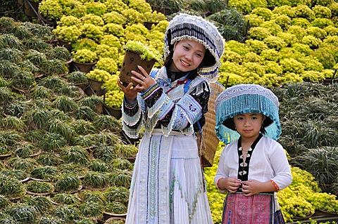 Tourists wearing a traditional costume, Sapa, Vietnam, Asia
