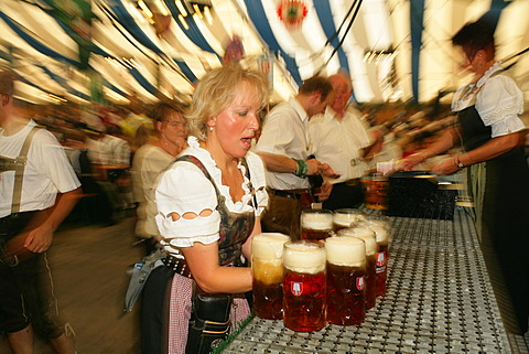 Attendees and wait staff in a beer tent at an international festival for national costume, Muehldorf, Upper Bavaria, Bavaria, Germany, Europe