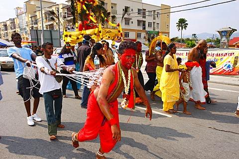 Pilgrim with spiritual piercing, Hindu festival Thaipusam, Batu Caves limestone caves and temples, Kuala Lumpur, Malaysia, Southeast Asia, Asia