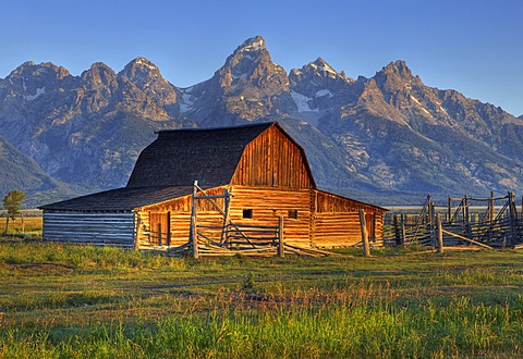John and Bartha Moulton Homestead, Mormon Barn in the morning, historic barn of the Mormons in front of Teton Range, Mormon Row Historic District, Antelope Flats, Grand Teton National Park, Wyoming, United States of America, USA