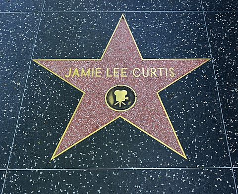 Terrazzo star for the actress Jamie Lee Curtis, film category, Walk of Fame, Hollywood Boulevard, Hollywood, Los Angeles, California, United States of America, USA, PublicGround