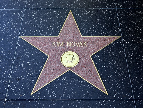 Terrazzo star for the artist Kim Novak, film category, Walk of Fame, Hollywood Boulevard, Hollywood, Los Angeles, California, United States of America, USA, PublicGround