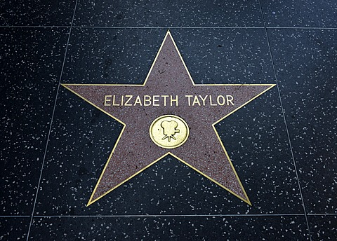 Terrazzo star for the artist Elizabeth Taylor, film category, Walk of Fame, Hollywood Boulevard, Hollywood, Los Angeles, California, United States of America, USA, PublicGround