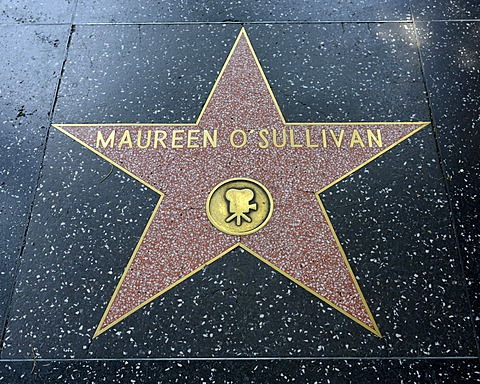 Terrazzo star for the artist Maureen O'Sullivan, film category, Walk of Fame, Hollywood Boulevard, Hollywood, Los Angeles, California, United States of America, USA, PublicGround