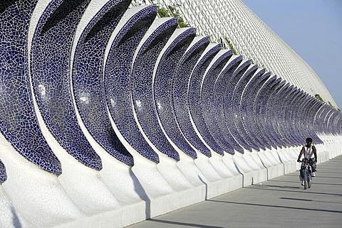 ESP, Spain, Valencia : Ciudad de las Artes Y de las Ciencias, City of arts and sciences. L\'Umbracle