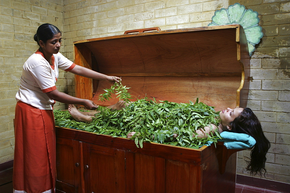 LKA, Sri Lanka : Siddhalepa Ayurveda Resort, body steam bath with fresh ayurvedic herbs.