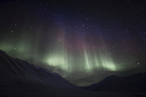 Polar night, green Northern Lights, Aurora Borealis, above the Todalen Valley, starry sky of a moonless night, Longyearbyen, Spitsbergen, Norway, Europe