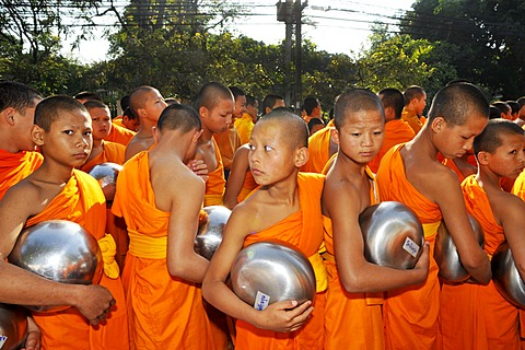 Novice Buddhist monks at a dawn ceremony in Chiang Mai, Thailand, Asia
