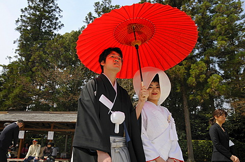 Japanese wedding couple wearing traditional wedding kimonos, bride wearing a bonnet, groom holding a red parasol in front of the Kamigamo Shrine, Kyoto, Japan, Asia