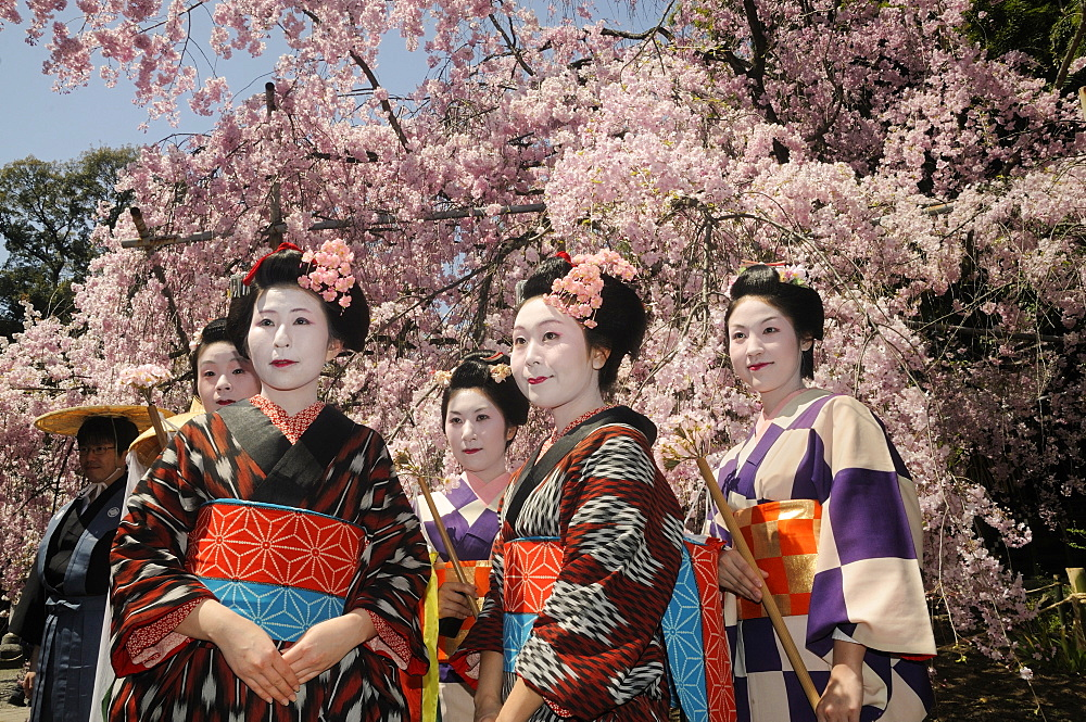 Japanese women in kimonos, procession participants, Hirano Shrine, Kyoto, Japan, East Asia, Asia