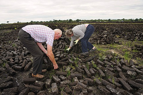 Peat briquettes for private domestic fuel being dried by the inhabitants themselves, Birr, Offaly, Midlands, Ireland, Europe