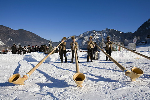 Alphorns alpenhorns in Rottach-Egern Upper Bavaria Germany