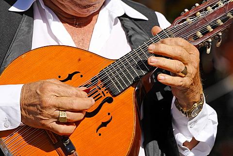 Musician with mandolin, San Bartolome de Tirajana, Tunte, Gran Canaria, Spain