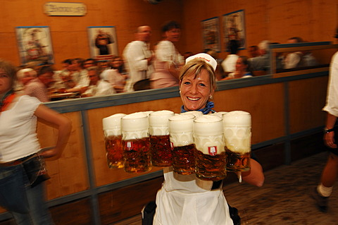 Waitress, Wies\'n, October fest, Munich, Bavaria, Germany, Europe