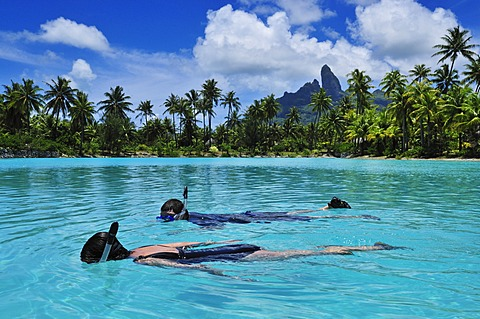Snorkellers, St. Regis Bora Bora Resort, Bora Bora, Leeward Islands, Society Islands, French Polynesia, Pacific Ocean