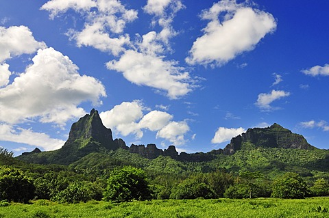Mount Tohiea, Valle de Gauguin, Moorea, Windward Islands, Society Islands, French Polynesia, Pacific Ocean