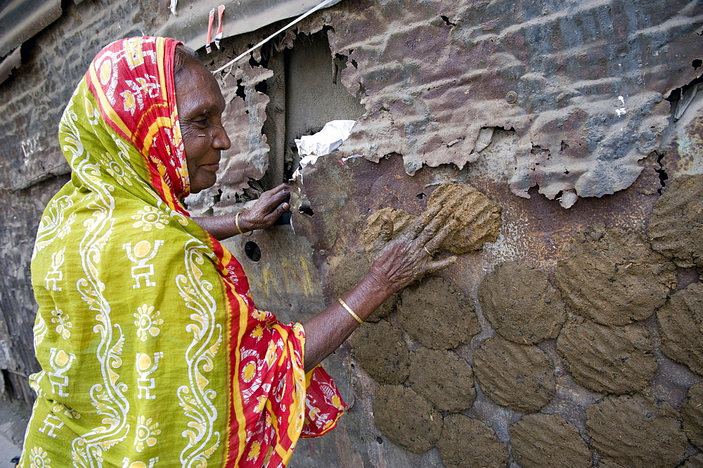 Woman pressing cow dung to dry on the wall of a house, Shibpur district, Howrah, Kolkata, West Bengal, India, Asia