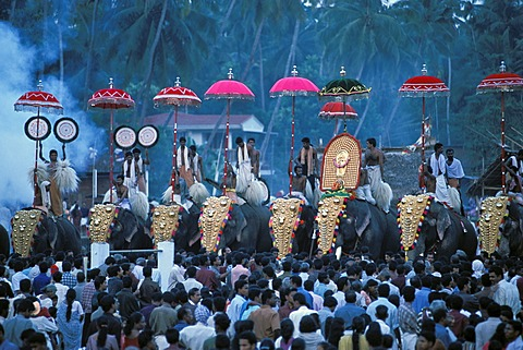 Elephant parade, near Sree Sastha Temple, Arattupuzha Pooram festival, near Thrissur, Kerala, South India, India, Asia