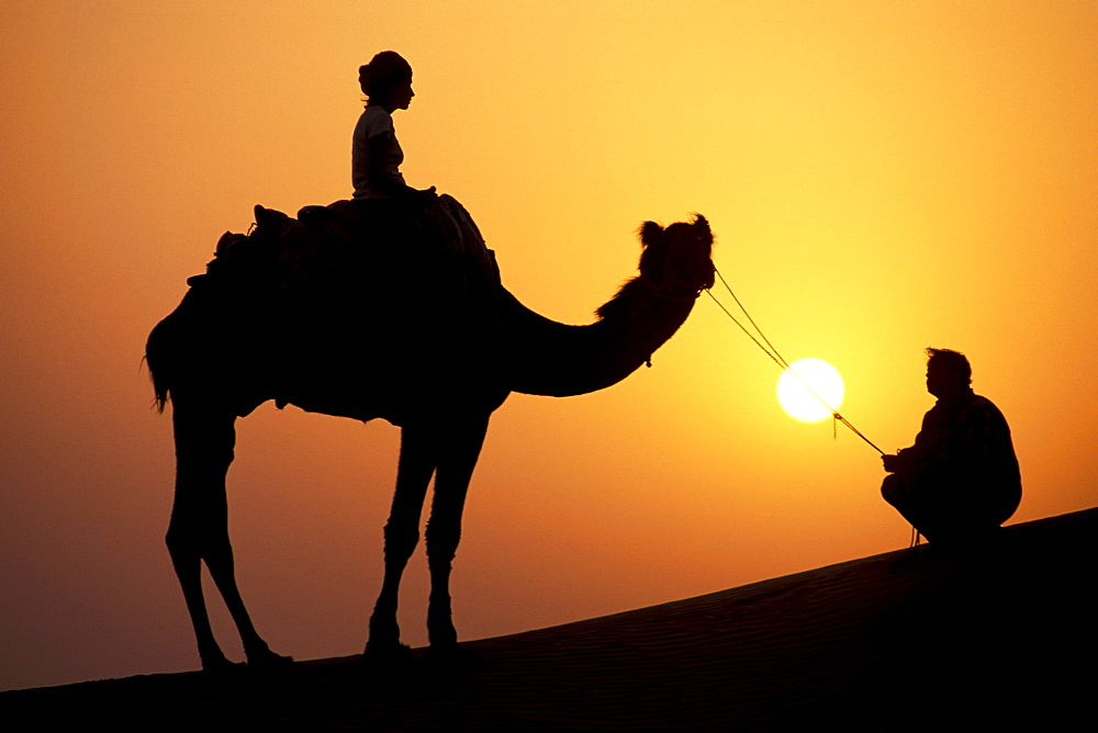 Sunset, silhouette, female tourist on a camel and camel driver, camel safari, Thar Desert, near Jaisalmer, Rajasthan, India, Asia