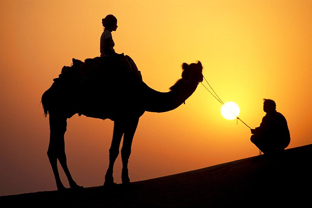 Sunset, silhouette, female tourist on a camel and camel driver, camel safari, Thar Desert, near Jaisalmer, Rajasthan, India, Asia