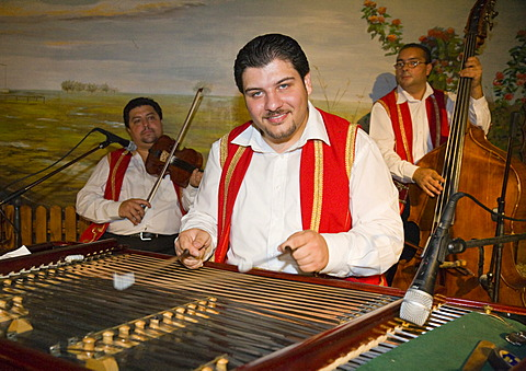 """The Roma-band """"Lugosi"""" with a Cimbalom player in the foreground, is playing in a Csarda, a traditional Hungarian tavern, Budapest, Hungary"""