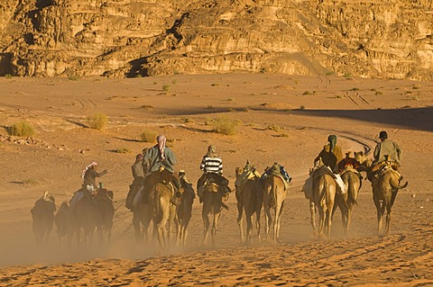 Bedouins with camels in the desert, Wadi Rum, Jordan, Middle East