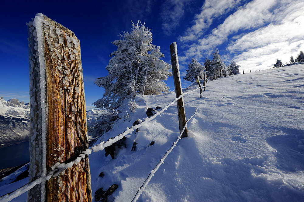 Fence in winter landscape, Firtzstock, Glarus, Eastern Switzerland, Switzerland, Europe