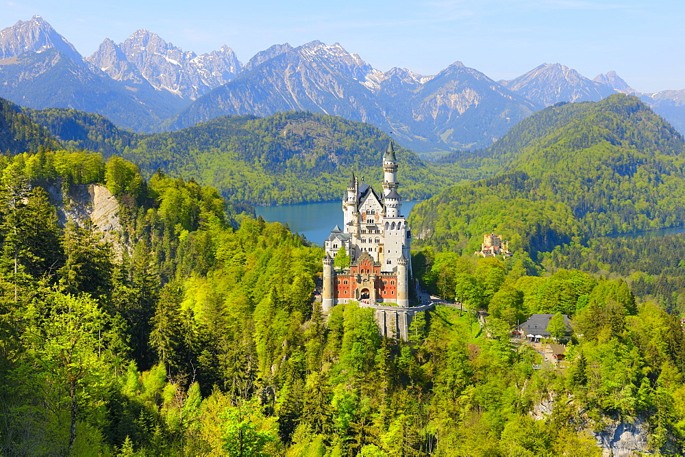 Schloss Neuschwanstein Castle near Fuessen, Allgaeu, Bavaria, Germany, Europe