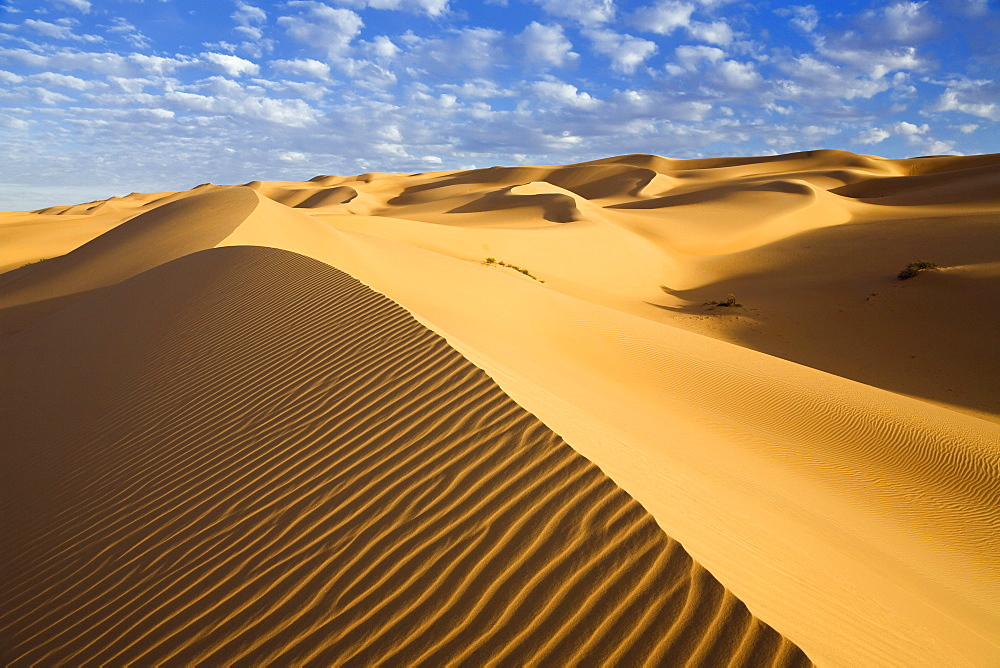 Ubari dunes in the Libyan Desert, Sahara, Libya, North Africa, Africa
