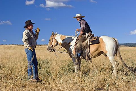 Cowboys talking, Oregon, USA