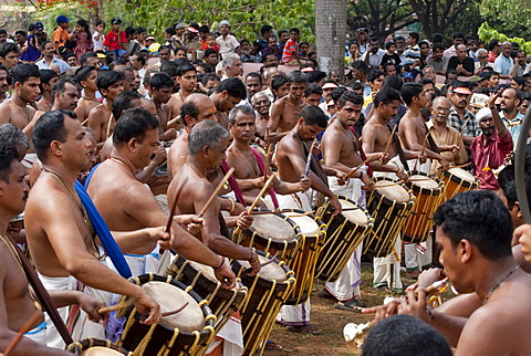 Musicians, drummer in front of visitors, Pooram Festival, Thrissur, Kerala, India, Asia
