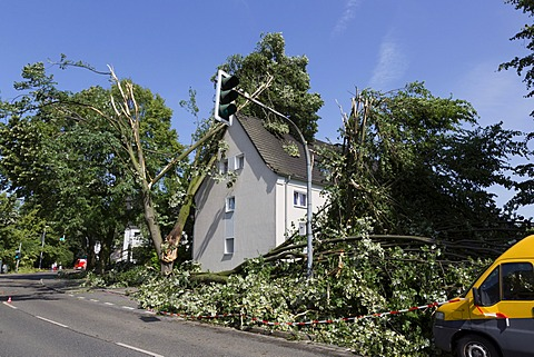 Uprooted trees have damaged a house, storm damage from 9 June 2014, Mülheim an der Ruhr, Ruhr Area, North Rhine-Westphalia, Germany, Europe