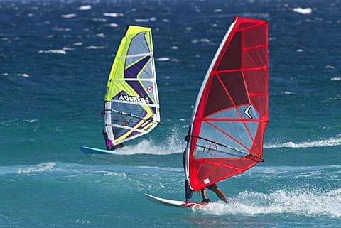 Wind surfers, Esperance, Western Australia, Australia, Oceania
