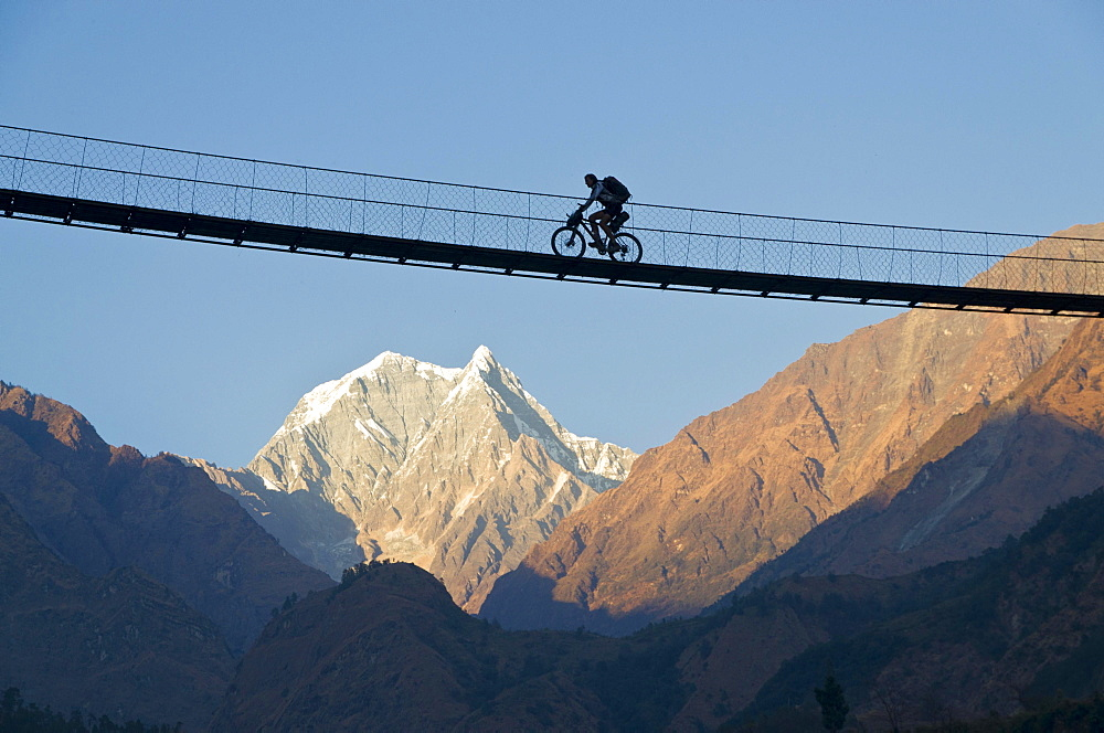 Cyclist crossing a suspension Bridge over Kali Ghandaki Valley, Nilgiri Mountain in the back, Tatopani, Annapurna Region, Nepal, Asia