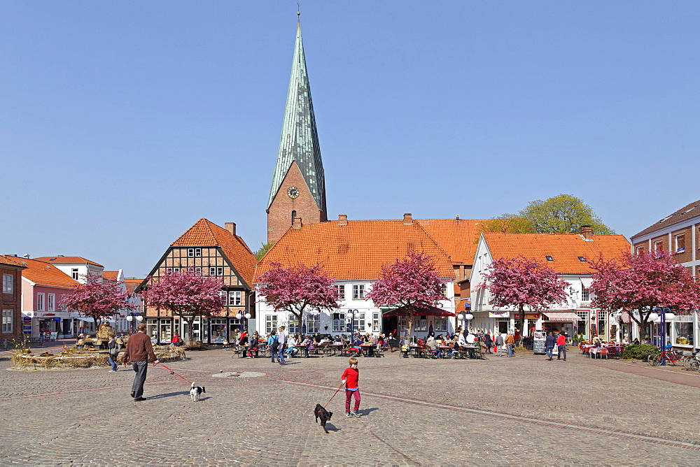 Market square and St. Michaelis Church, Eutin, Schleswig-Holstein, Germany, Europe - 832-378732