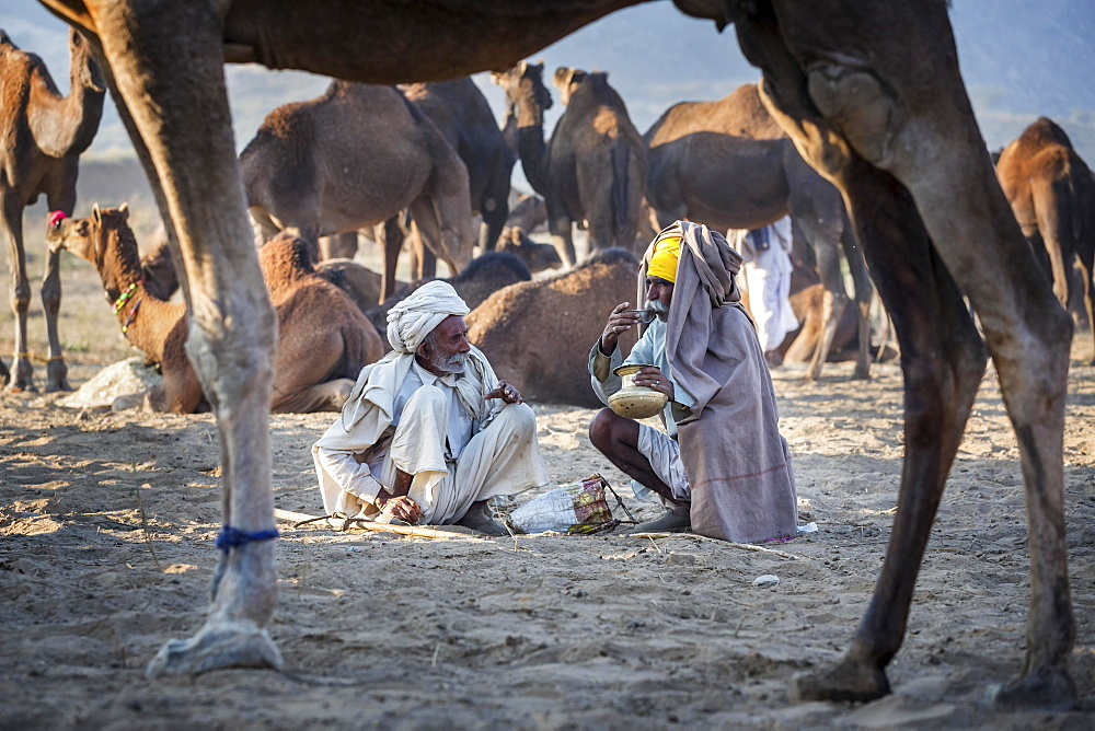 Two men having a drink, Pushkar Camel Fair, Pushkar, Rajasthan, India, Asia