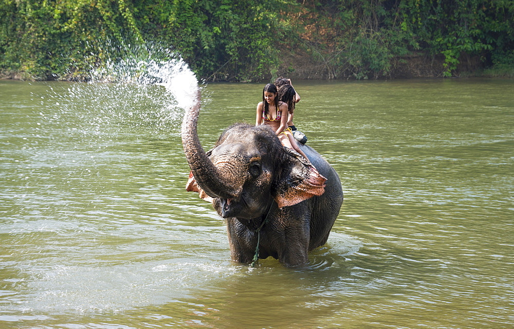Elephant spraying tourists, Kanchanaburi Province, Central Thailand, Thailand, Asia