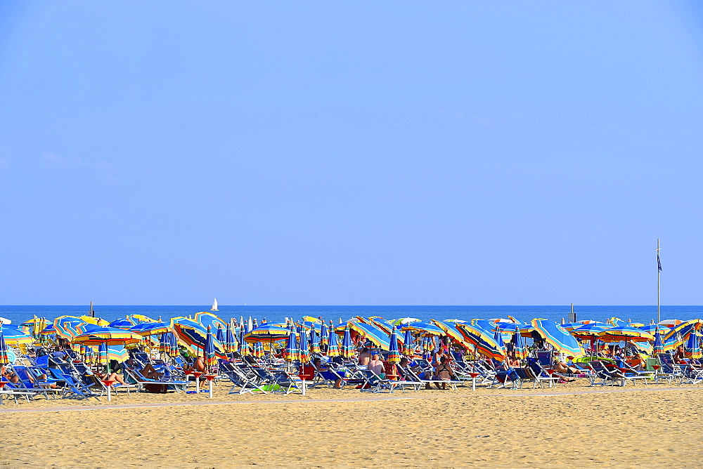Sandy beach, sea, sun loungers and parasols, Bibione, Veneto, Italy, Europe